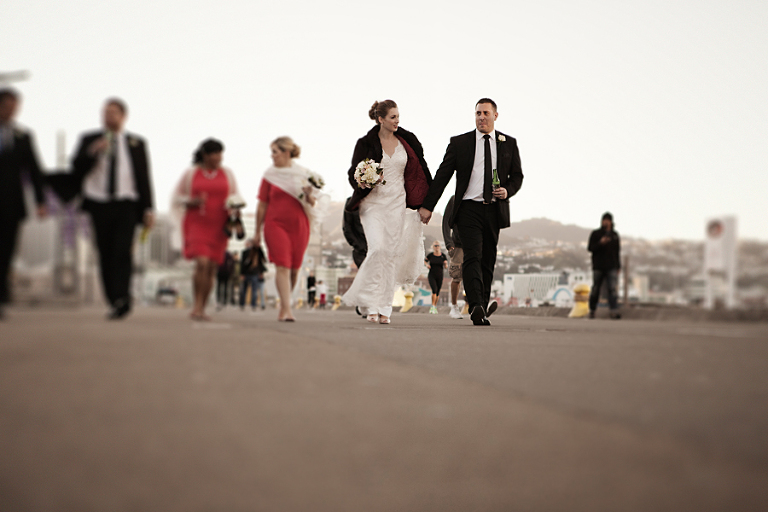 Wellington waterfront sunset wedding photography