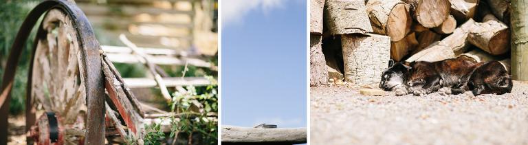 Te Horo Sudburys Wedding photography