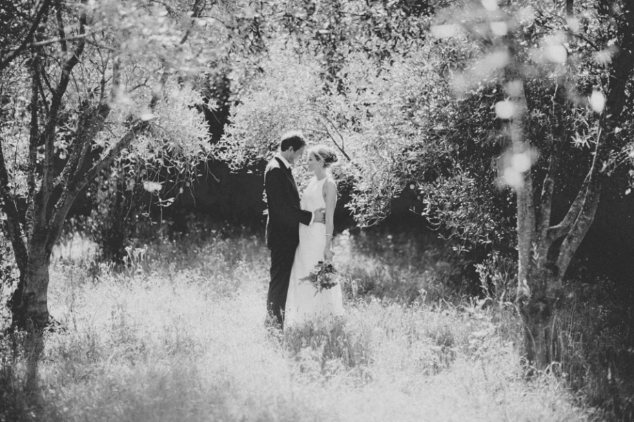 Olive Grove Orchard Wedding Photography
