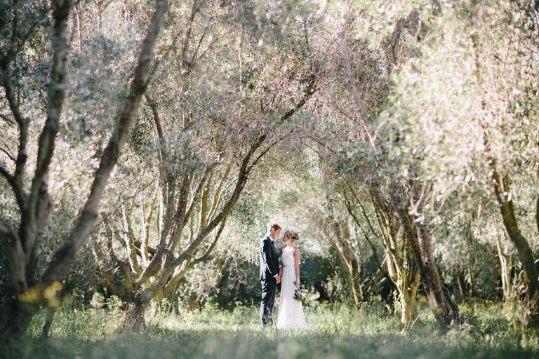Olive Orchard Wedding Photo, Featherston Photography