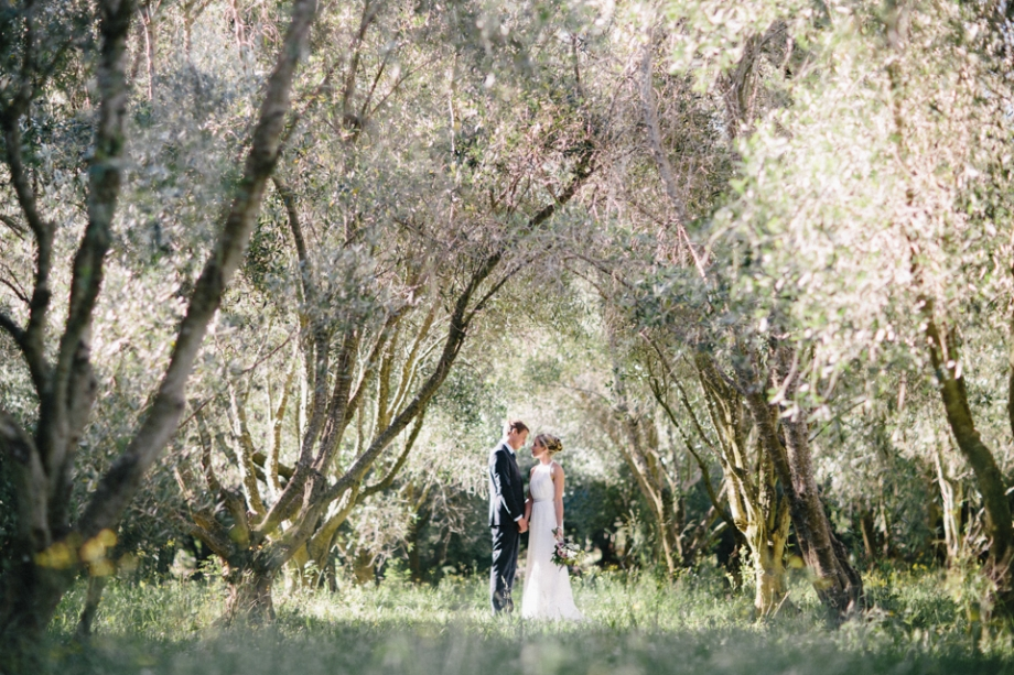 Olive Orchard Wedding Photo, Featherston Photography