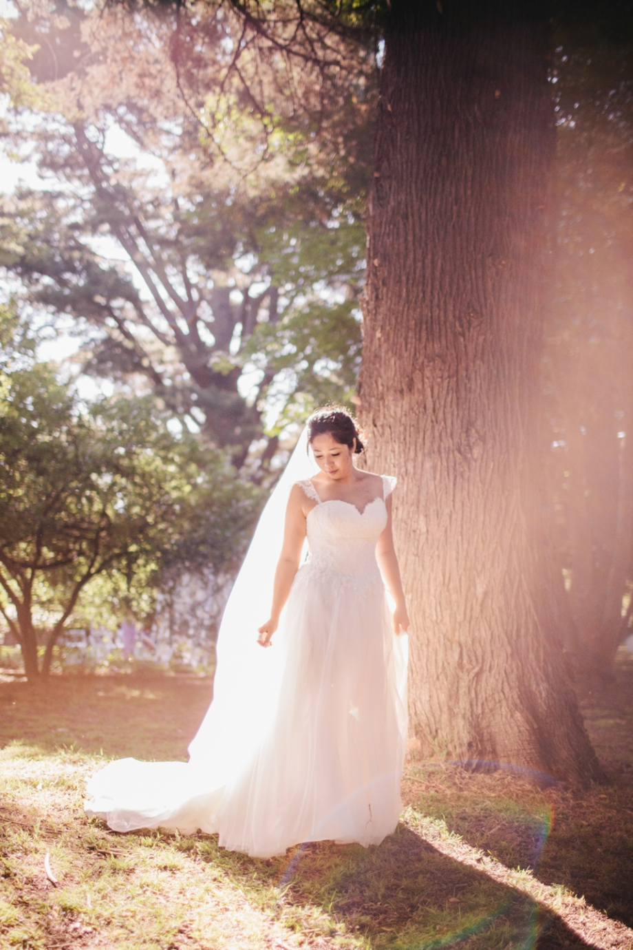 Bridal in sunflare photography