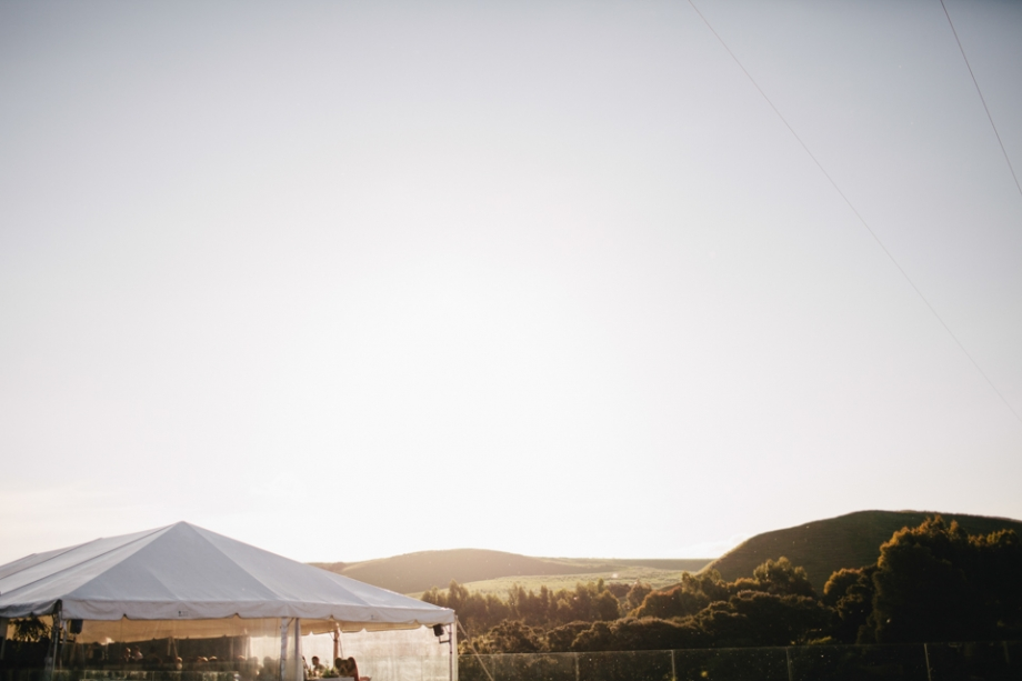 Martinborough Wedding Marquee against sunset